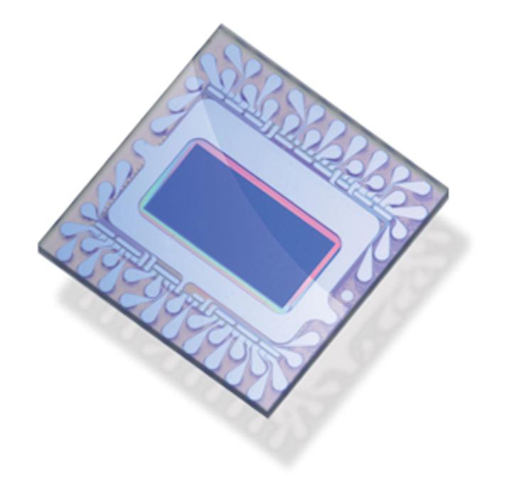 Melexis MLX75411 Avocet VGA image sensor