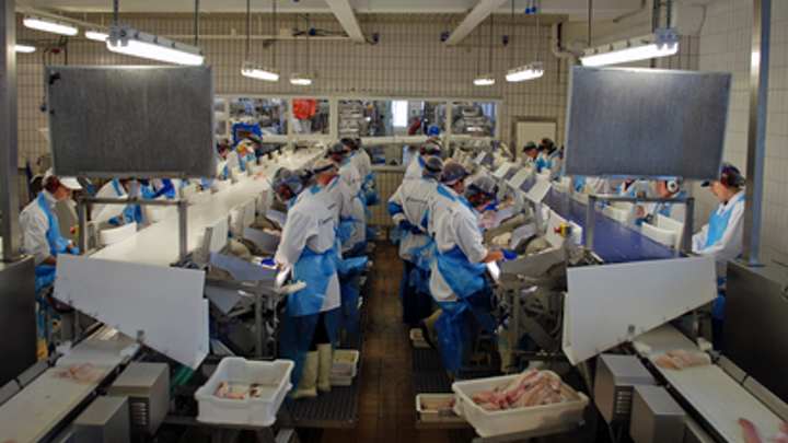 Hyperspectral imaging system helps automate inspection of cod fillets in production