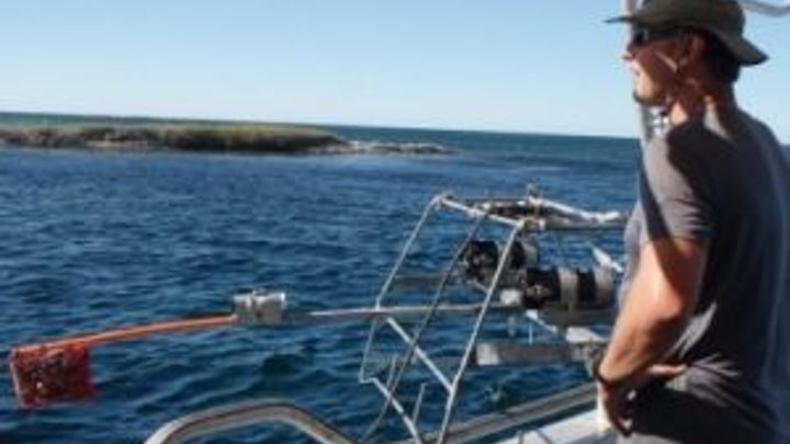 University of Western Australia researchers have been awarded a grant to develop a vision-based computer algorithm to monitor fish populations
