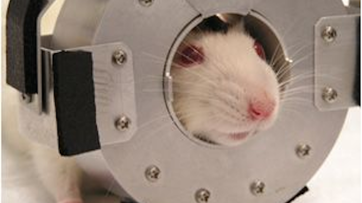 Startup SynchroPET is looking to commercialize a portable brain-imaging PET scanner that was invented by Brookhaven National Laboratory scientists.