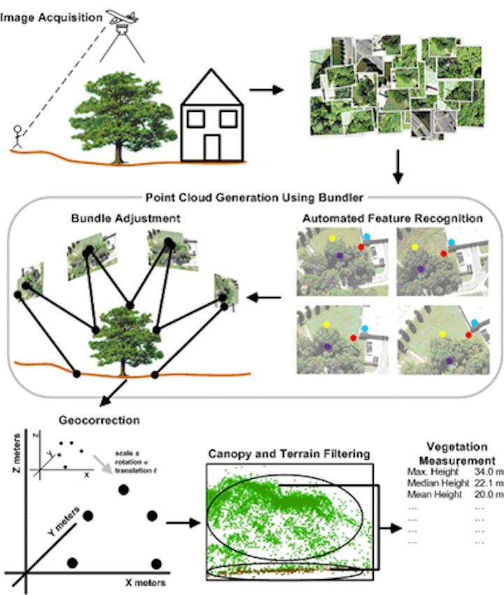 Low cost method maps vegetation in 3-D