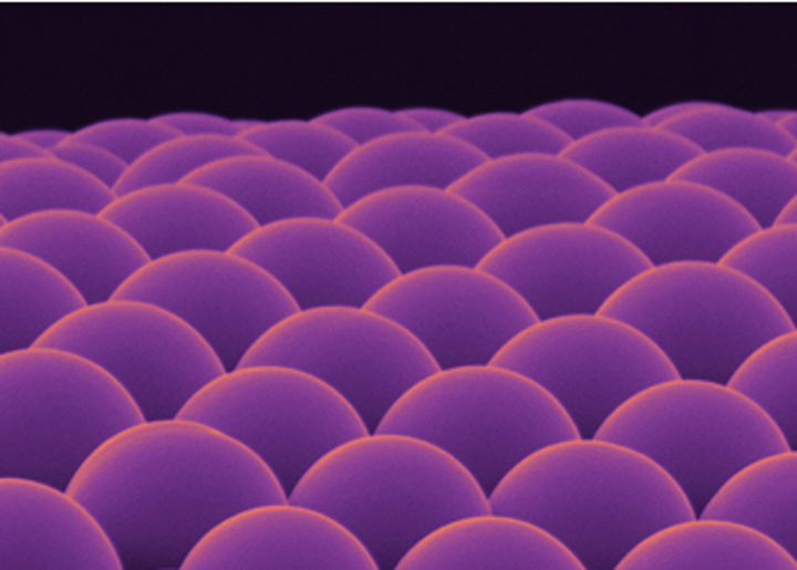 Microlens arrays built from biomaterials