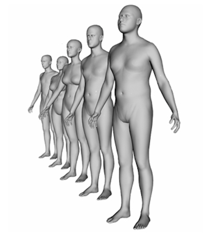 Shoppers create 3-D models of their own bodies on-line