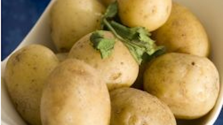 Potato industry reaps benefits of computer vision