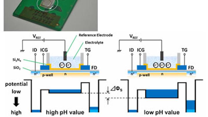 Image sensor detects pH