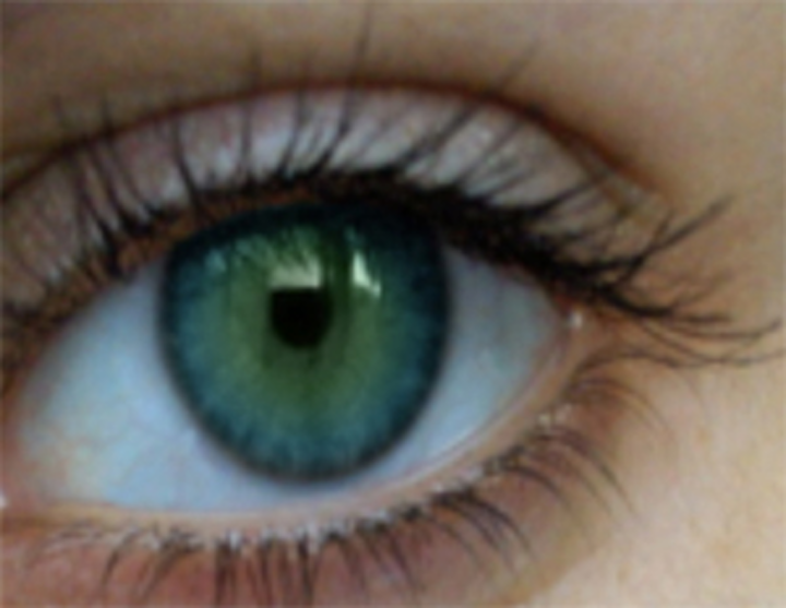 Student software app spots signs of sight loss
