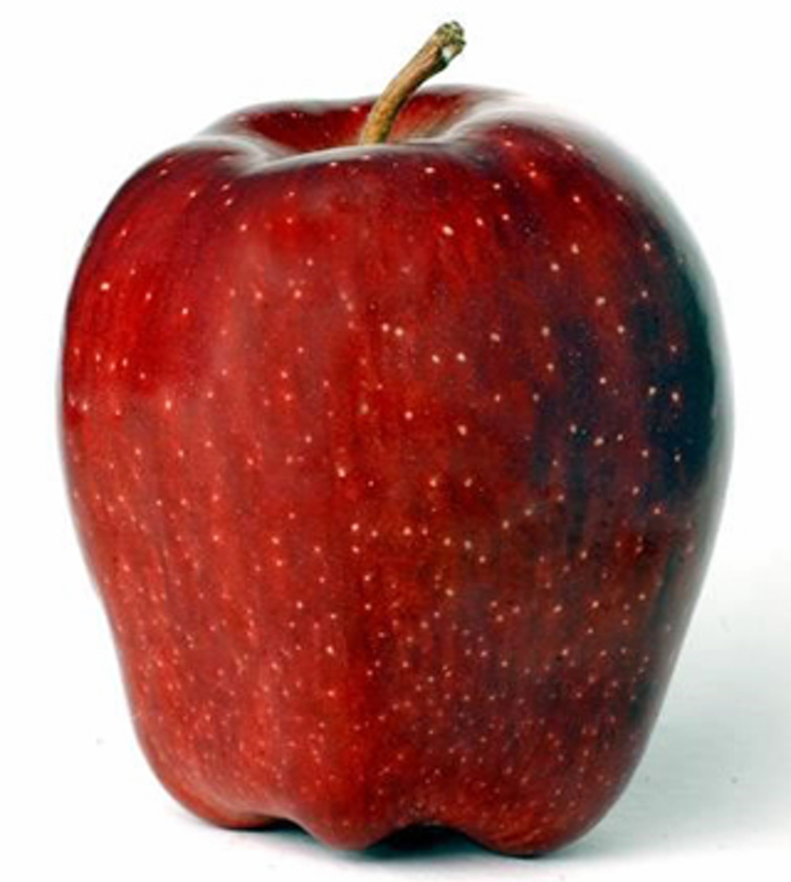 Hyperspectral imaging system detects defects on apples
