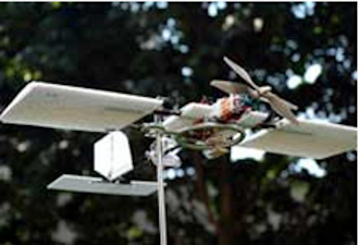 Cameras capture bird motion to aid with development of UAV