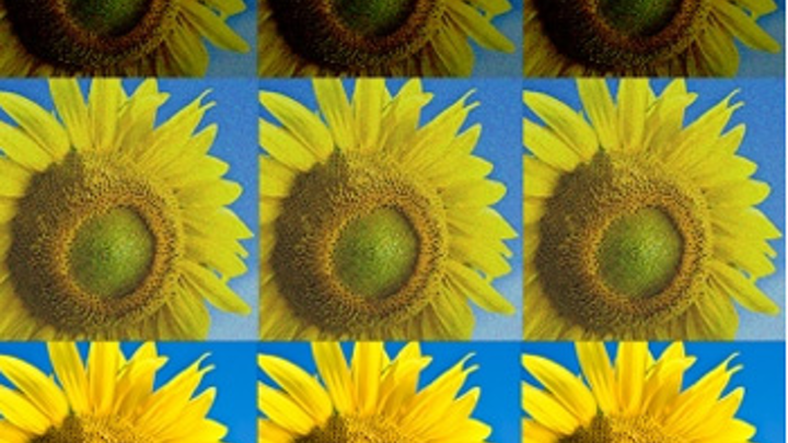 MIT researchers develop new programming language for image processing