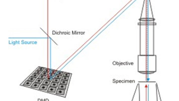 Micromirror speeds image acquisition of microscope