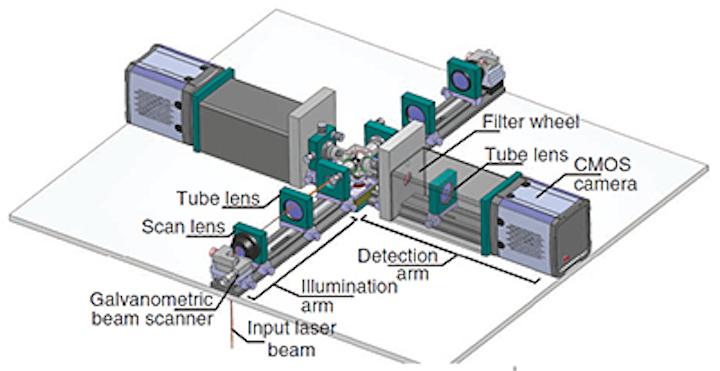 Cameras help image live biological specimens in 3-D