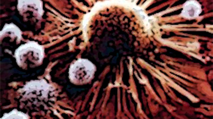 Luminescent bacteria help monitor tumors