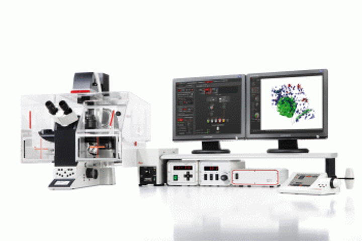 Automation features in Leica software enable high-quality microscopy imaging