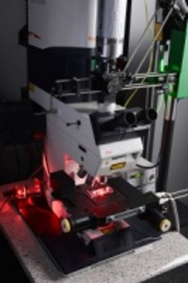 Content Dam Vsd En Articles 2014 01 Fraunhofer Imaging Technique Enables Faster Testing Of Drug Ingredients Leftcolumn Article Thumbnailimage File