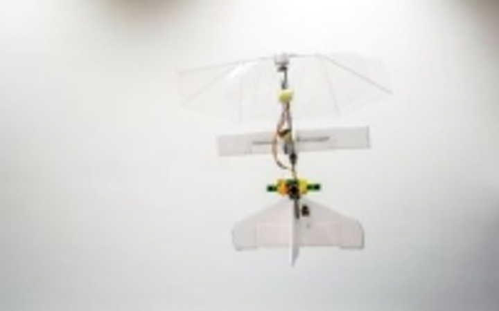 Content Dam Vsd En Articles 2014 01 Vision Enabled Flapping Wing Micro Air Vehicle Weighs Just 20 Grams Leftcolumn Article Thumbnailimage File