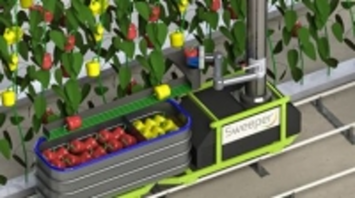 Content Dam Vsd En Articles 2015 02 Vegetable Harvesting Robot Being Developed By European Commission Leftcolumn Article Thumbnailimage File