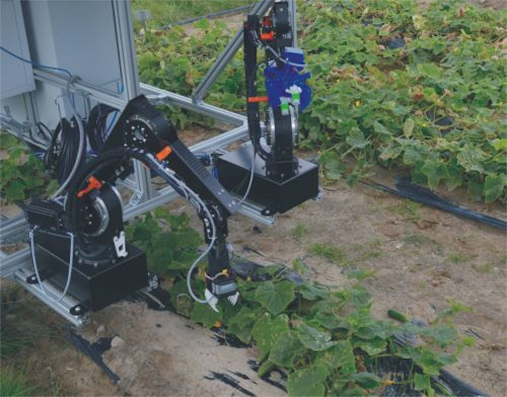 Content Dam Vsd En Articles 2018 02 Researchers Develop Lightweight Dual Arm Vision Guided Robot System For Cucumber Harvesting Leftcolumn Article Headerimage File