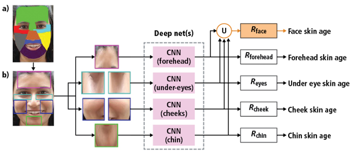 Figure 1: Olay's Skin Advisor software uses computer vision and deep learning techniques to generate skin quality scores across several facial regions.